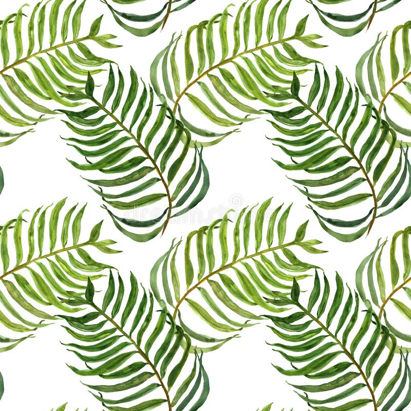 Watercolor seamless pattern with palm leaves. Exotic tropical green foliage on white background. Modern botanical print vector illustration