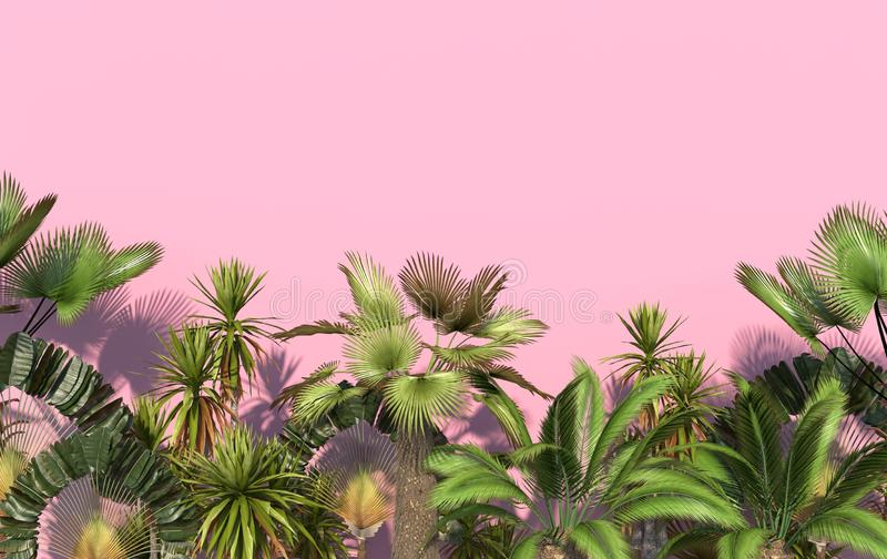 Green palm trees and tropical exotic plants on a pink background with copy space. Conceptual creative illustration. 3D rendering stock illustration