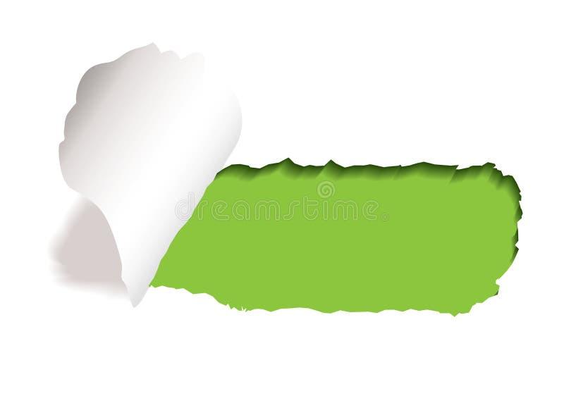 Green paper slot tear vector illustration