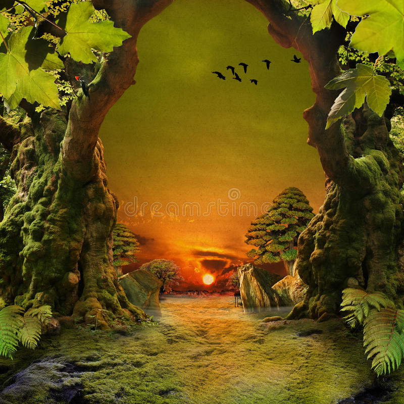 Download Green Paradise stock photo. Image of ecosystem, decay - 39502126