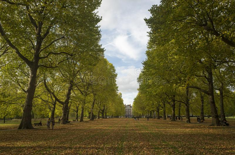 Green Park London Great Britain, October 16 2017 . People walking in the park, Beautiful autumn day. royalty free stock images