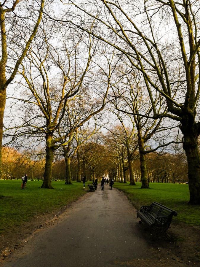 Green Park, London, United Kingdom royalty free stock photo