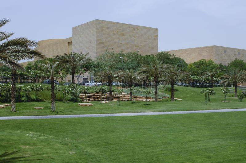 Green Park with Palms in Riyadh, Saudi Arabia. On a Sunny Day stock photo