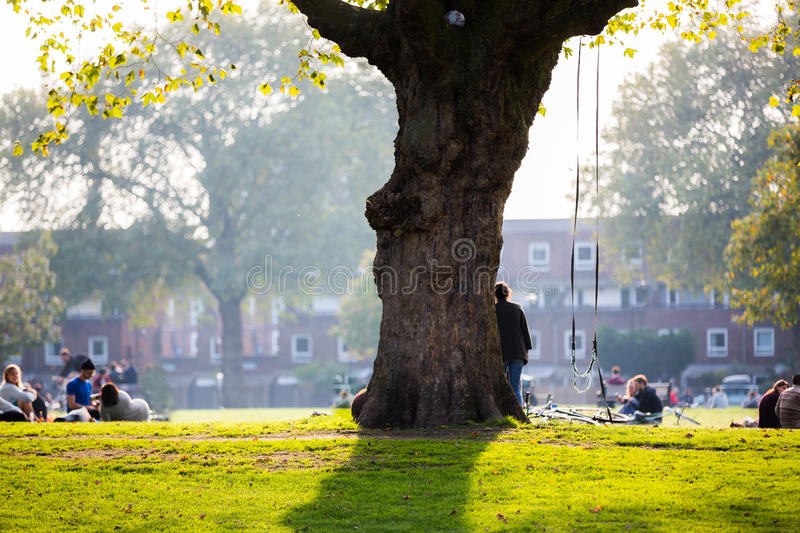 Green park at university campus in England stock photo