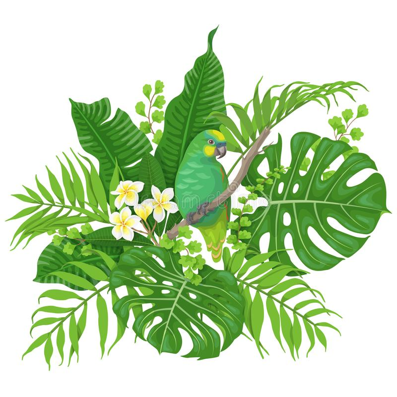 Green Parrot and Tropical Plants stock illustration
