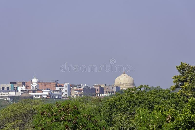 Green part of New Delhi, India royalty free stock image