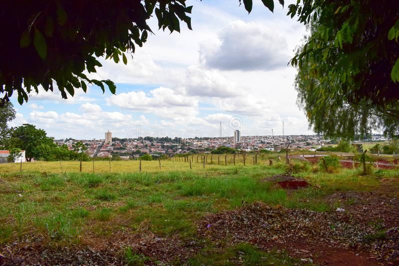 Green Pasture and Skyline from Pederneiras, Brazil royalty free stock image
