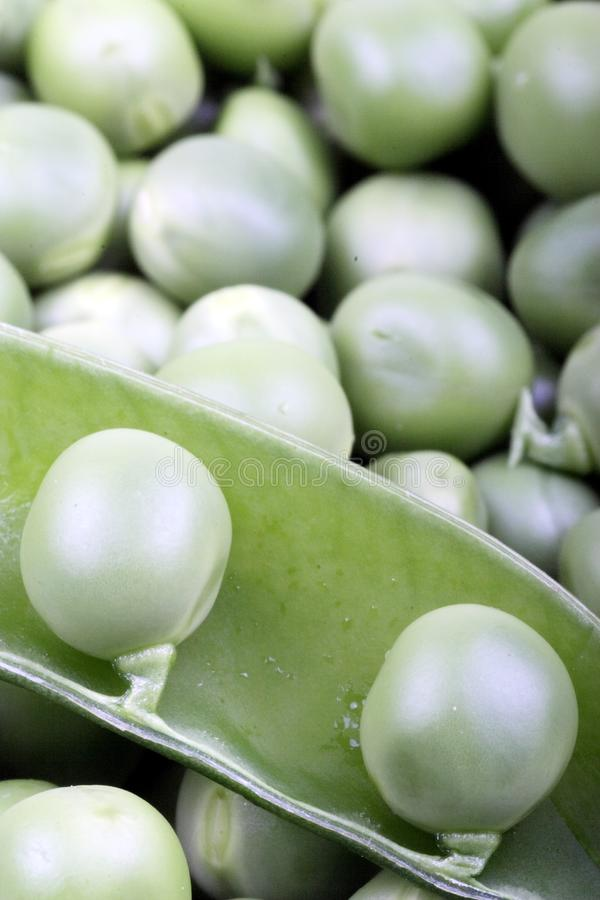 Download Green pea stock photo. Image of grocery, food, healthy - 8313900