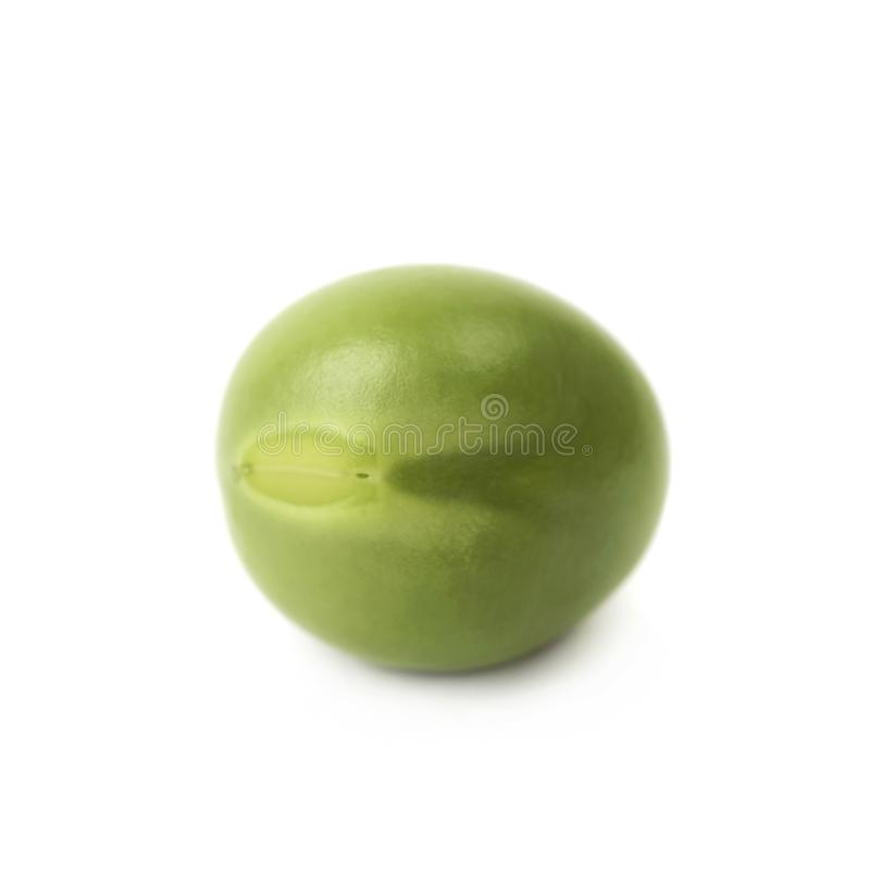 Green pea bean isolated royalty free stock photography