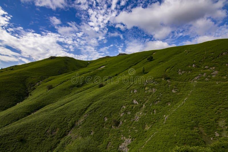 Green peak royalty free stock images