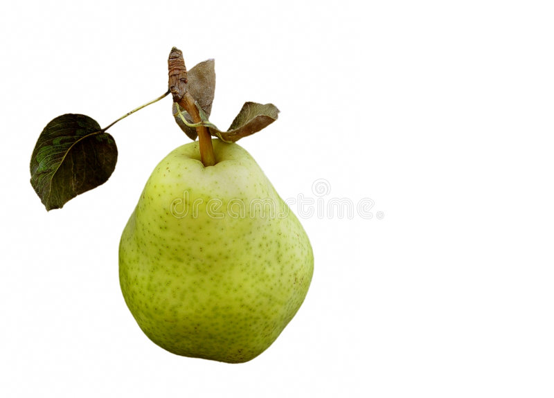 Download Green pear stock photo. Image of isolated, pear, food, vegetable - 21180