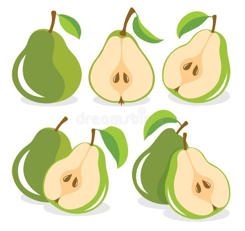 Green pears vector illustration