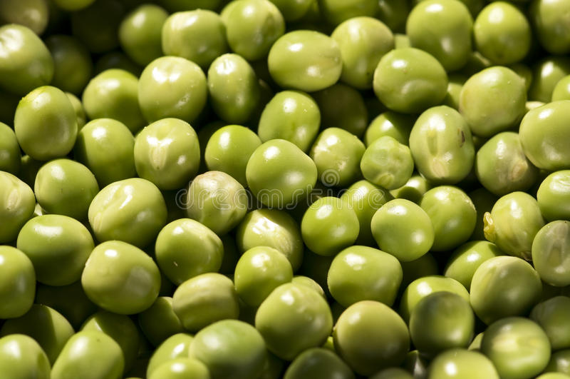 Download Green peas stock image. Image of diet, grain, flora, fresh - 18520257