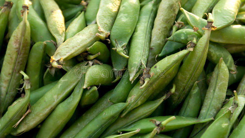 Download Green Peas Royalty Free Stock Photos - Image: 23417468