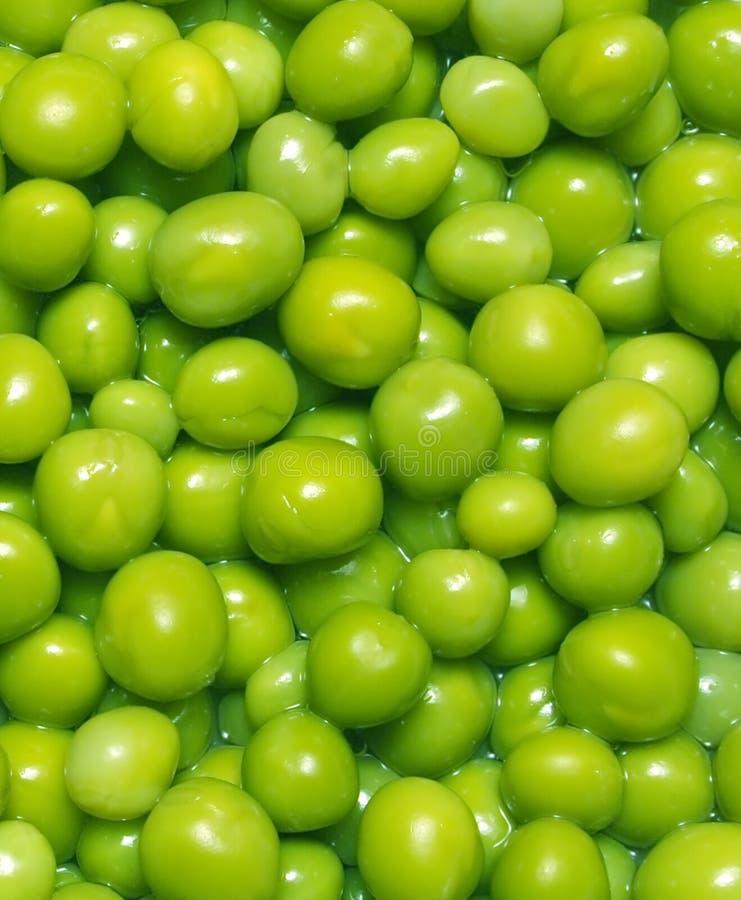 Free Green Peas Stock Image - 2566331
