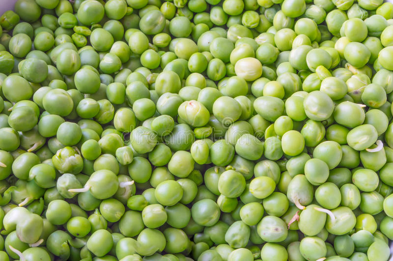 Green Peas Close up. Shelled Green Peas Close up royalty free stock photo