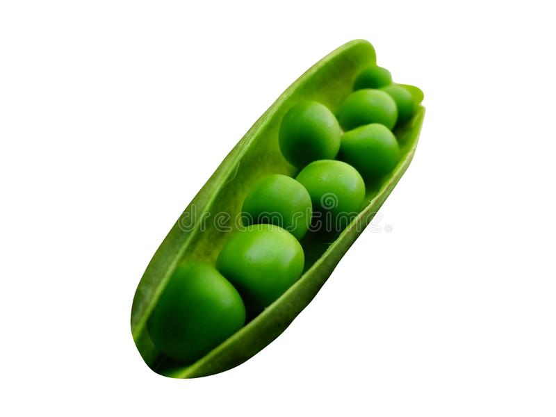 Green Peas isolated with PNG format. Green Peas isolated with white background with PNG format. Macro Photograph tranparent stock images