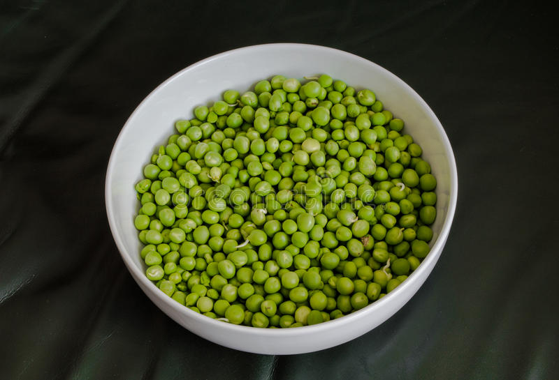 Green Peas in a White Bowl. Fresh Green Peas in a White Bowl royalty free stock photography