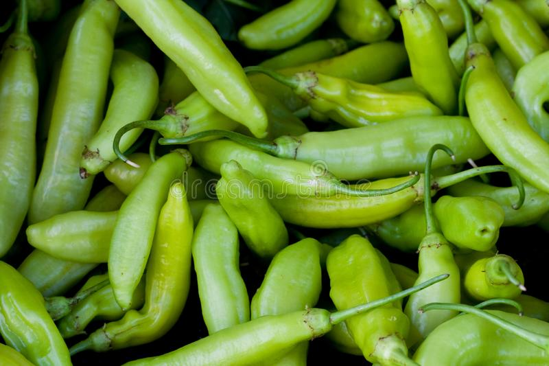 Green peppers close up. Green chilly peppers in a market place royalty free stock image