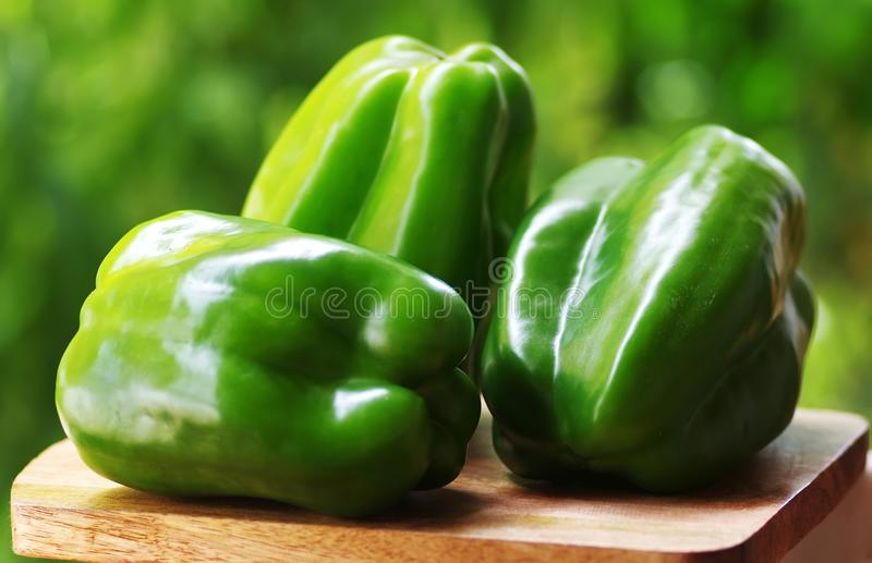 peppers isolated on green background royalty free stock photos