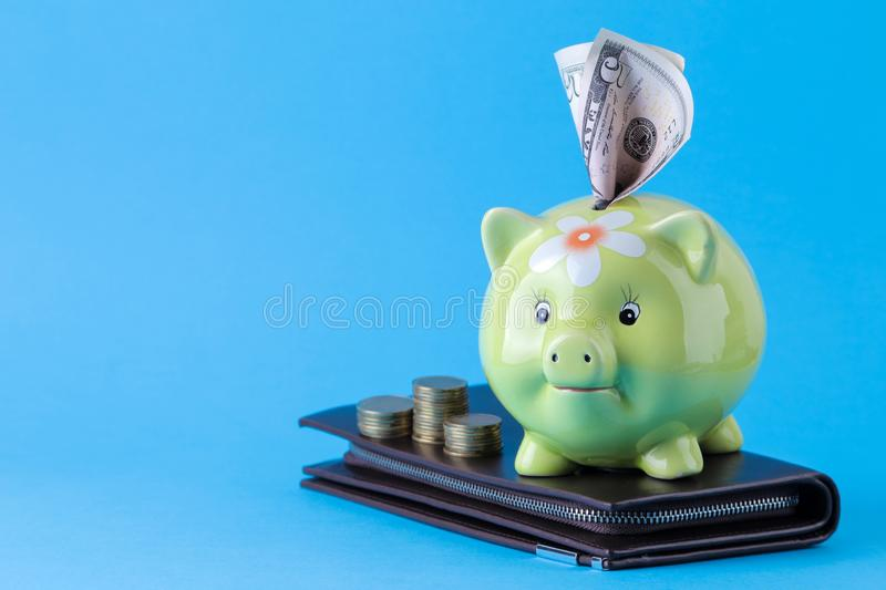 Green pig moneybox and money on bright blue background. Finance, savings, money. space for text stock photo