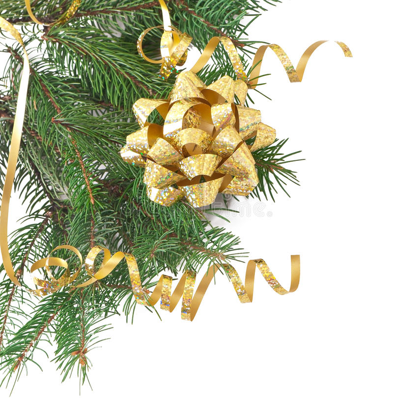 Download Green Pine Branch With Gold Bow Stock Photo - Image: 33197336