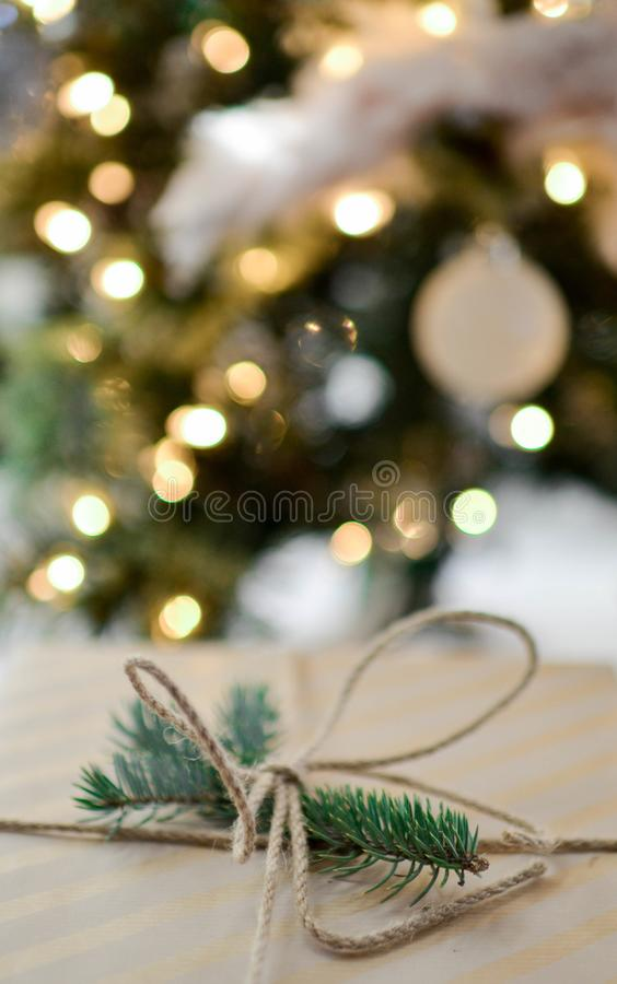 Green Pine Leaves With Brown Rope royalty free stock image