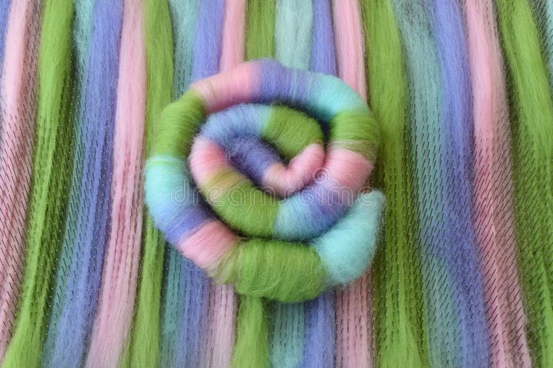 Green, pink, blue, and purple wool rolag coil on a blending board royalty free stock photo