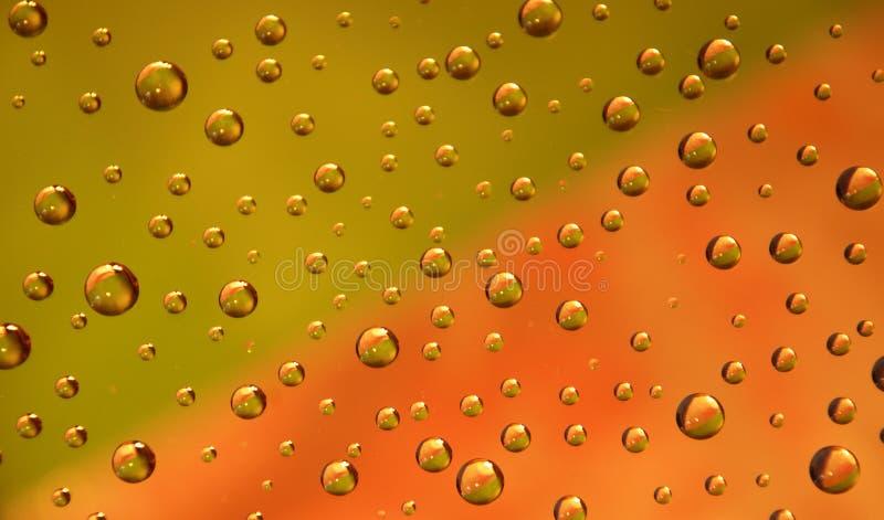 Green-pink drops stock image