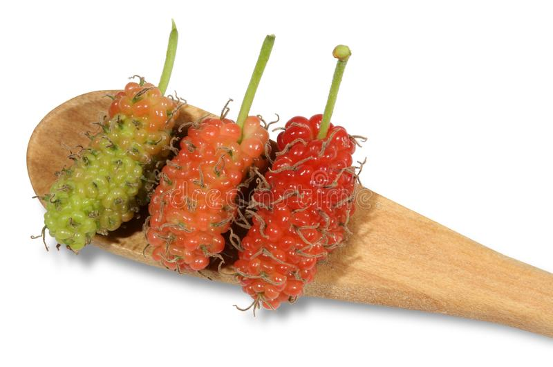 Green and pink and red mulberry placed on a wooden spoon. royalty free stock photo