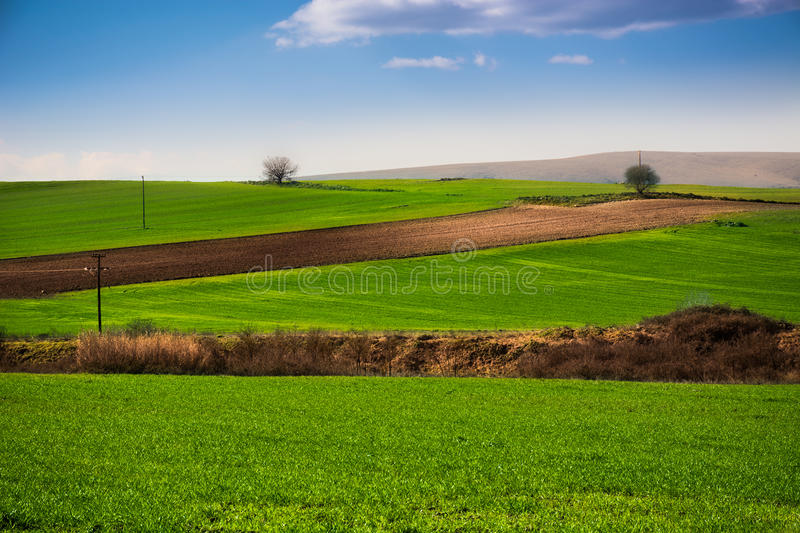 Green plain royalty free stock images