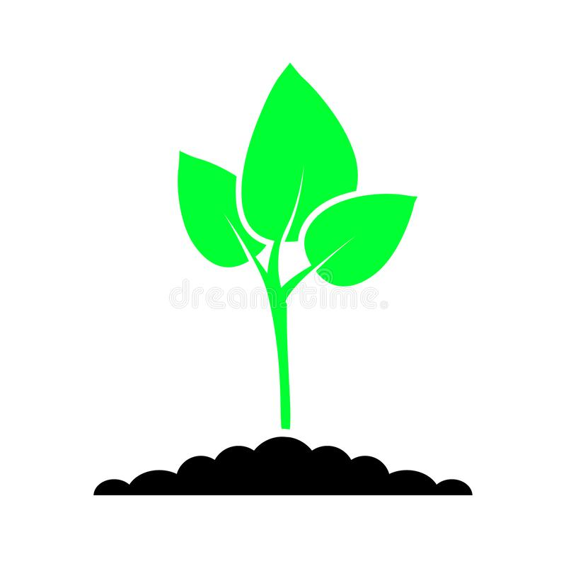 Green plant color icon vector. Plant illustration symbol. for web sites. vector illustration