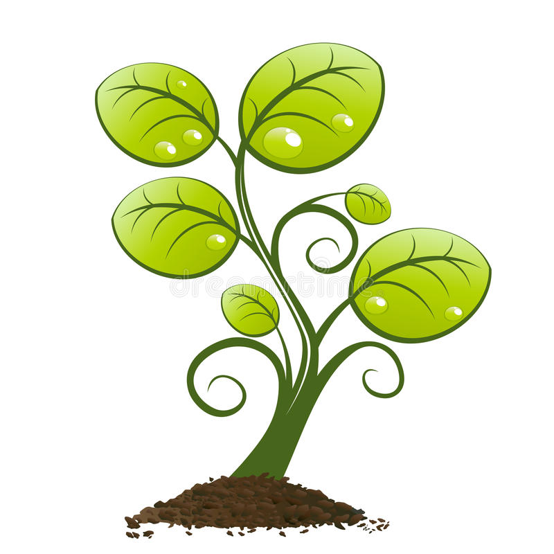 Green plant growing from soil royalty free illustration