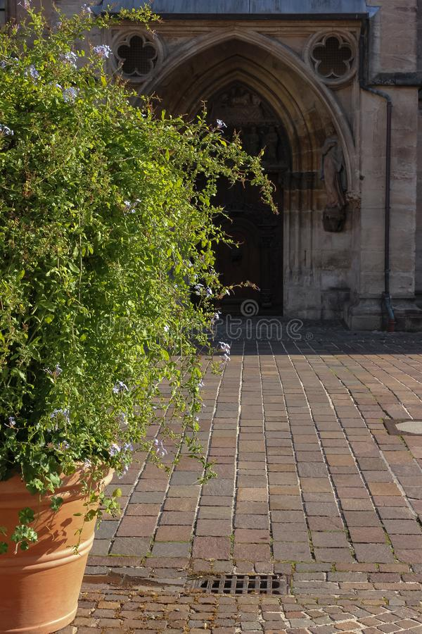 Green plant before historical church facade. In autumn south germany afternoone royalty free stock photos