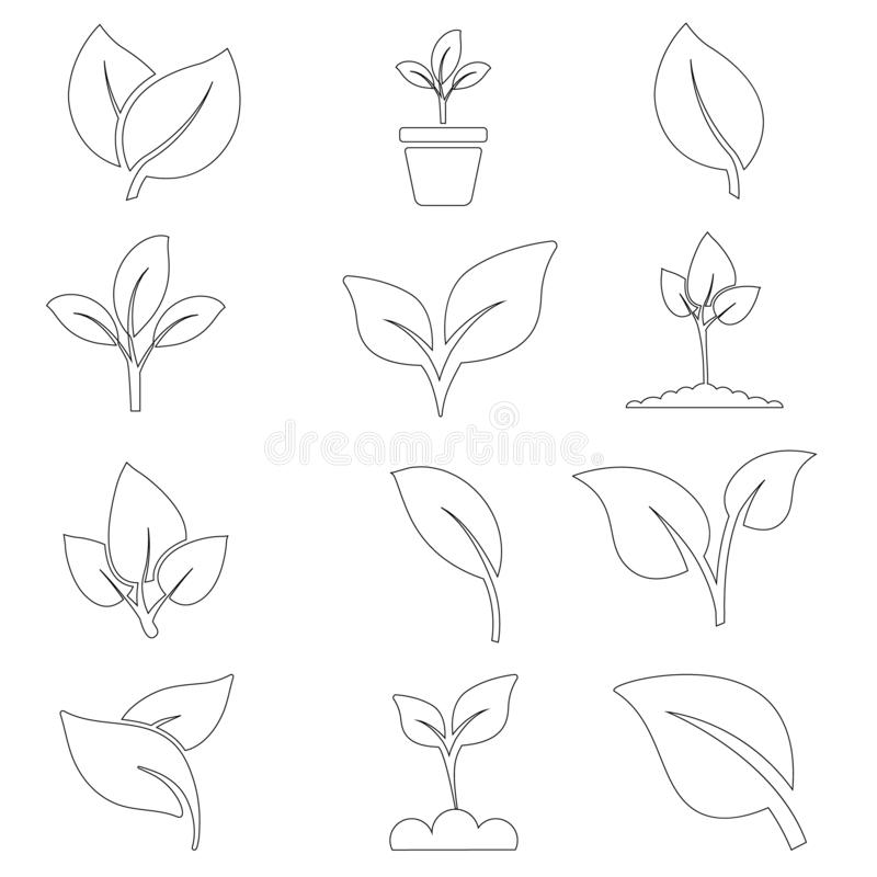 Green plant and leave color icons set vector. Green plant vector icon illustration. vector illustration