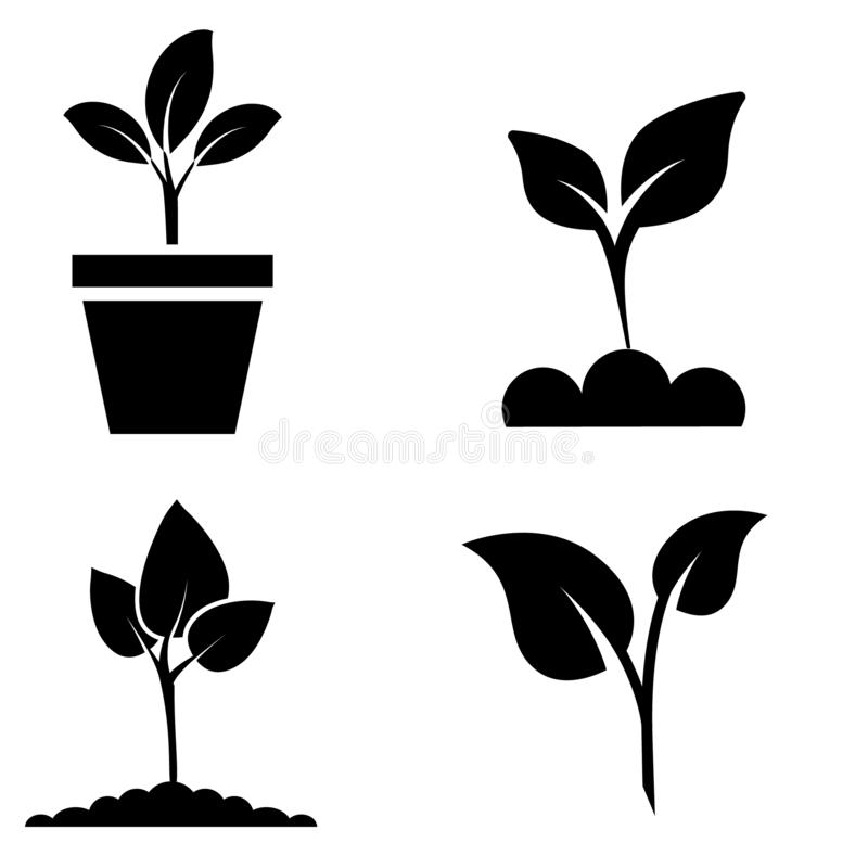 Green plant and leave color icons set vector. Green plant vector icon illustration. royalty free illustration