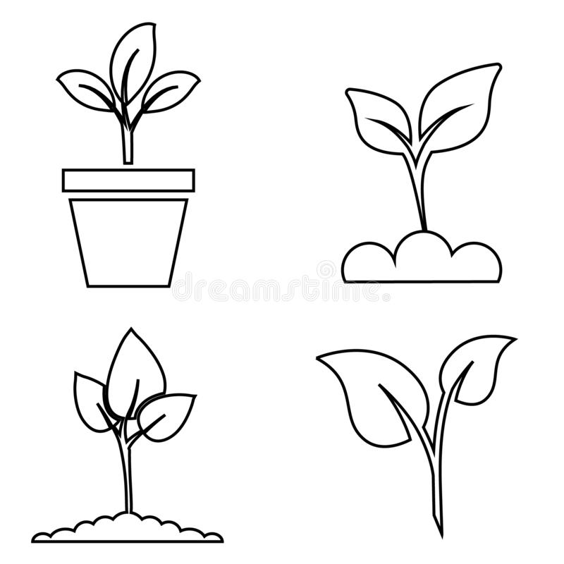 Green plant and leave color icons set vector. Green plant vector icon illustration. Green plant and leave color icons set vector. Green plant vector icon stock illustration