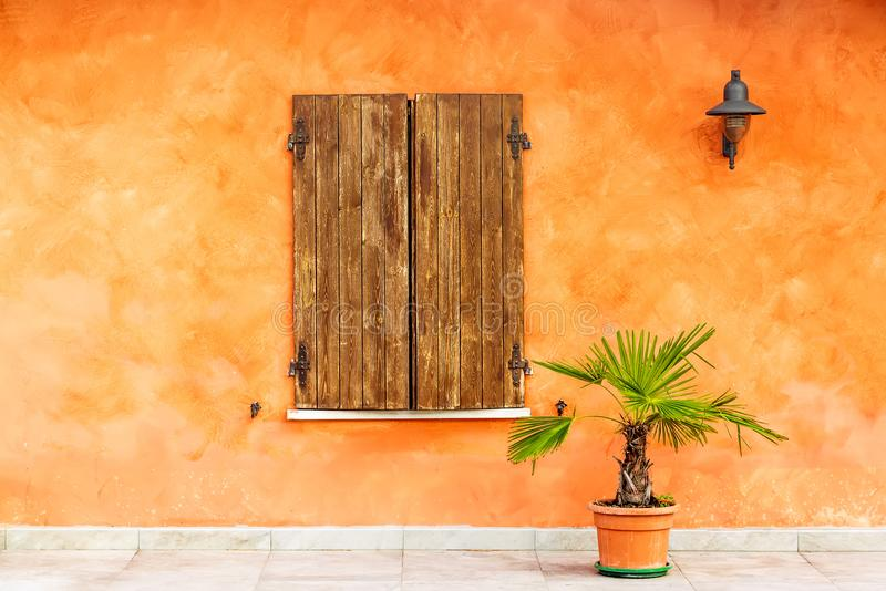 Green plant in a pot near window of an old orange painted house with brown wooden shutters. Italian picturesque image.  royalty free stock images