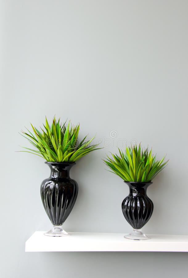 Green Plant In Vase Decorated For Room Stock Photography