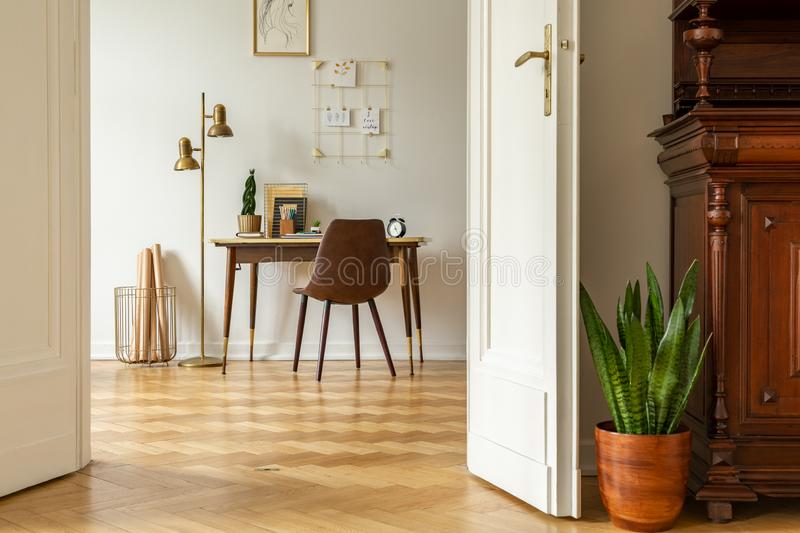 Green plant by white door into a freelancer`s home office interior with golden, industrial floor lamp by a wooden desk. Concept stock photography