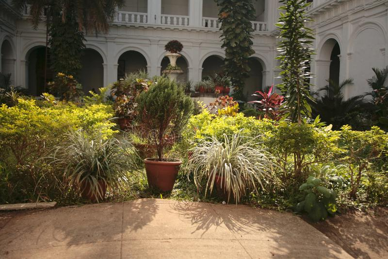 Green plants in the courtyard of an apartment house. Of colonial style. India royalty free stock photography
