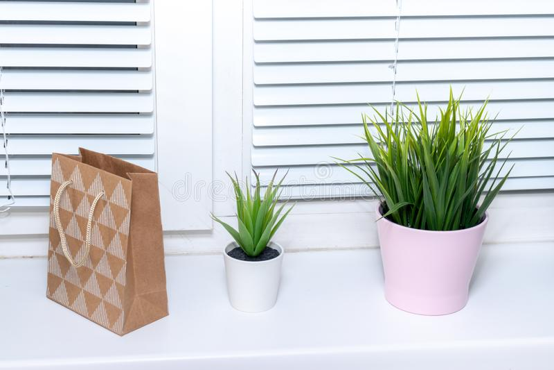Green plants in flower pots on window sill, bright modern interior decor stock photos