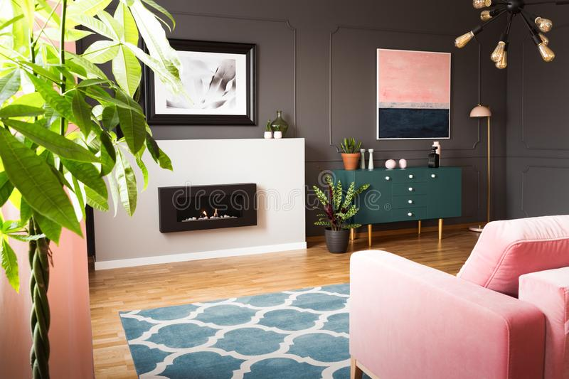 Green plants in a hipster living room interior with molding on dark walls and a pink sofa in front of a burning fireplace. Real photo royalty free stock image