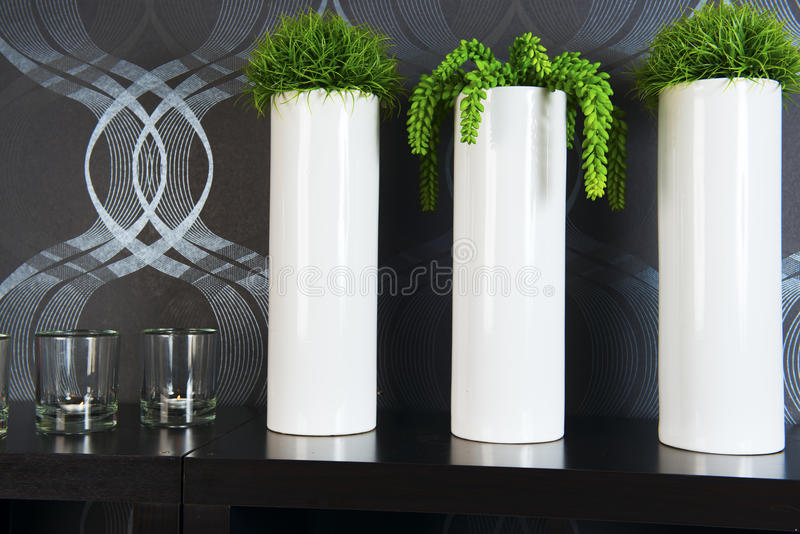 Green plants in tall pots stock image