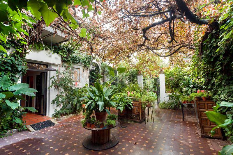 Green plants and trees inside courtyard of historical house in Andalusia. Home garden with beautiful flowerpots. In tradition style of Spain royalty free stock photography