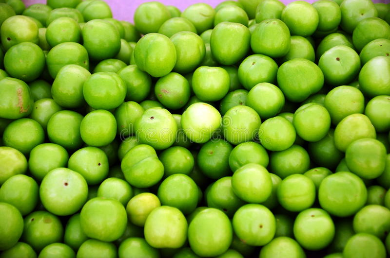 Green plum. Fresh green plum as a background royalty free stock image