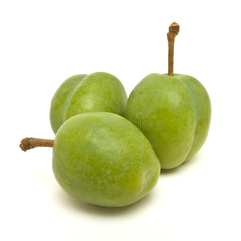 Green Plum. From low perspective isolated against white royalty free stock photo