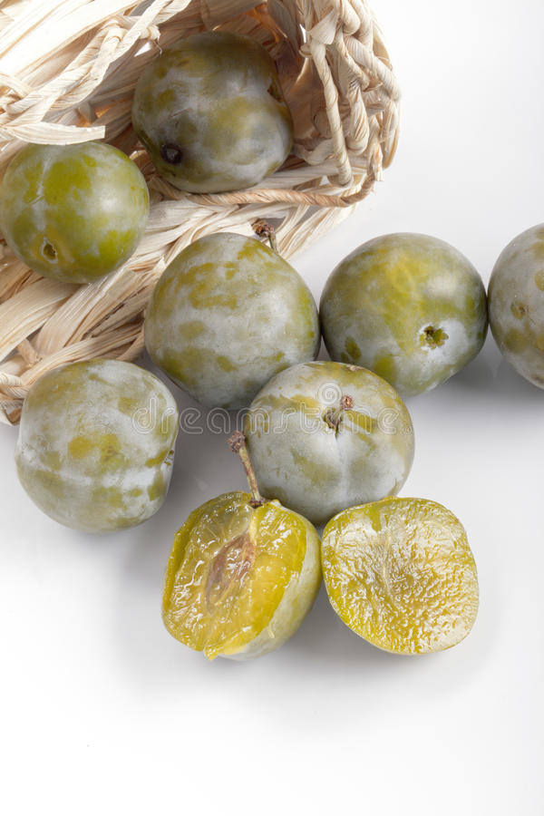 Green plum. Greengage green plum organic sweet delicious stone fruit royalty free stock images