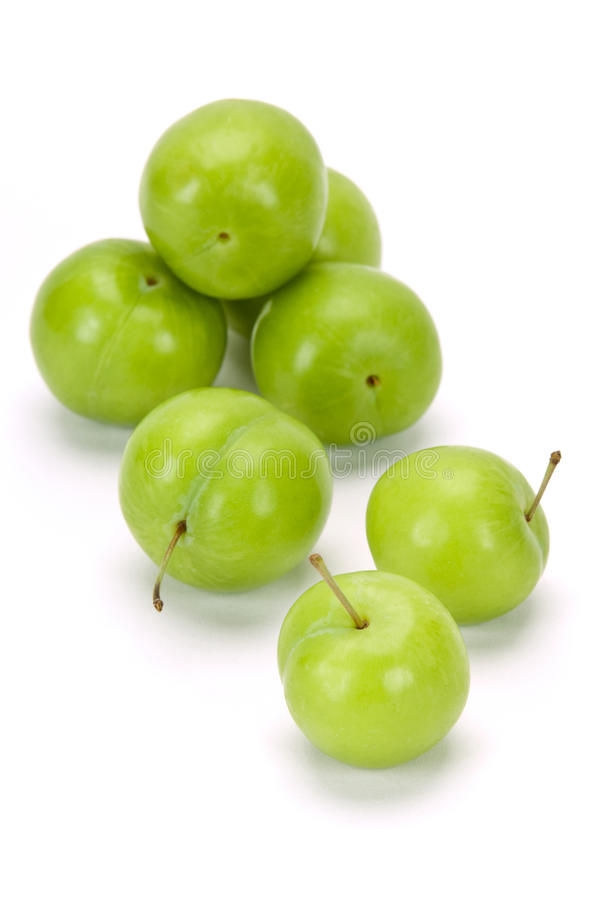 Green plums on white stock photography