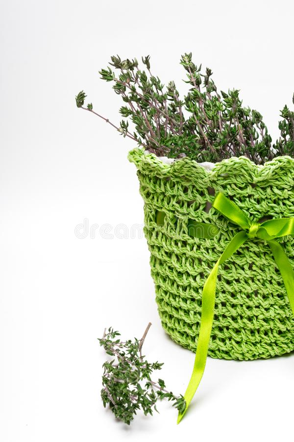 green pot with fresh italian rosemary isolated on white background stock photo